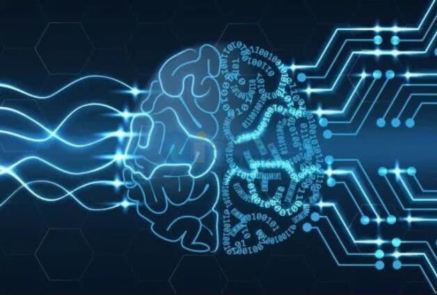 """深度学习算法""""解密""""脑活动"""