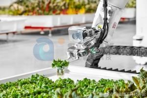 机器人头条机器人种植蔬菜,农民也要下岗吗?