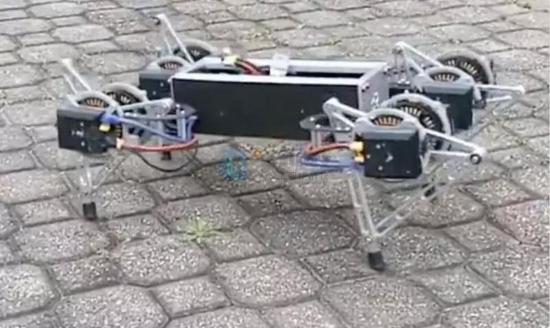 哇,一只蟑螂!但它在苍蝇拍出现之前就已经消失了。现在,研究人员抓住了他们能找到的蟑螂,并利用这种讨厌臭虫的精湛技术创造了一种简单易行的方法来评估和改善机器人的运动。
