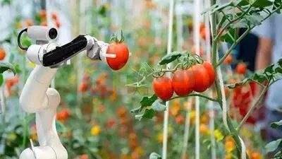 人工智能参与农作物病虫害防治过程,助力传统农业转型升级